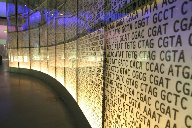 The future of storage is in DNA?