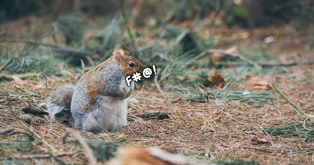 A squirrel swearing.