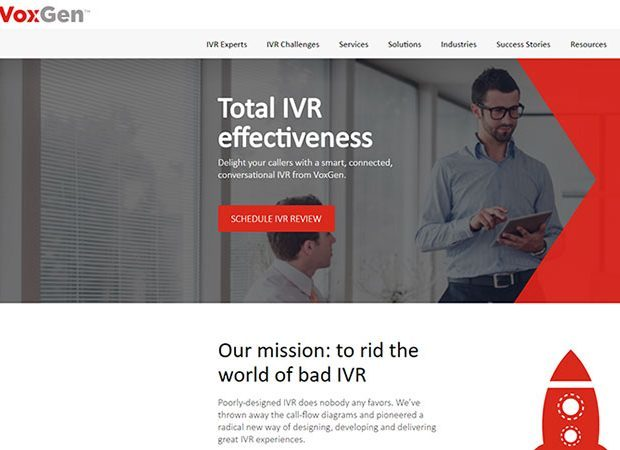 VoxGen web copy case study